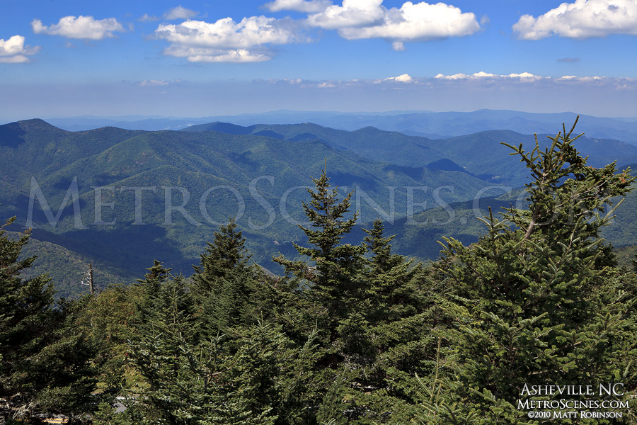 Mount Mitchell View