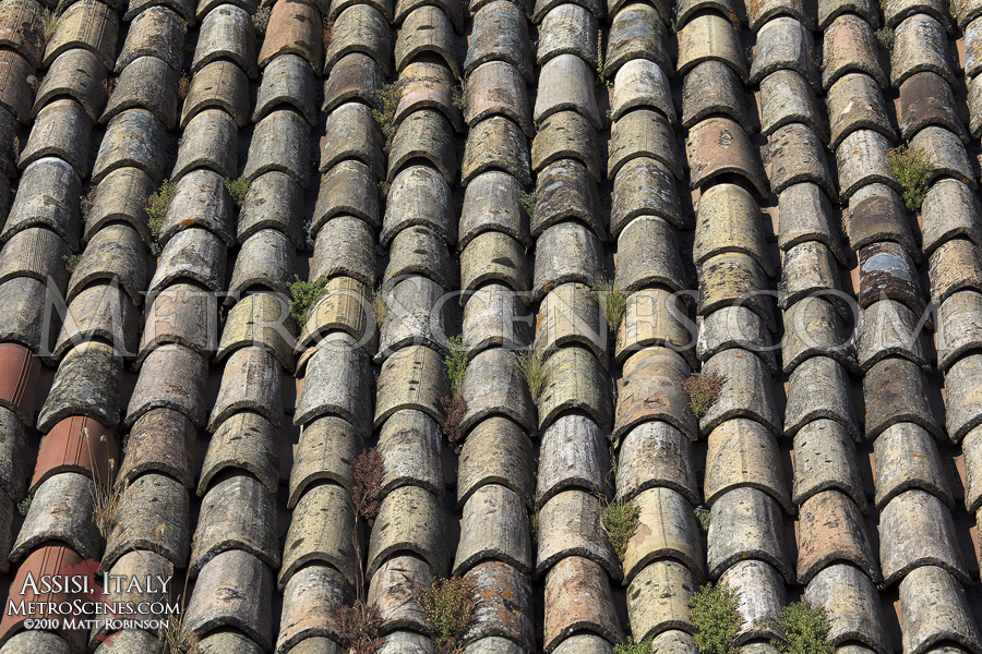 Terracotta rooftops define Italy
