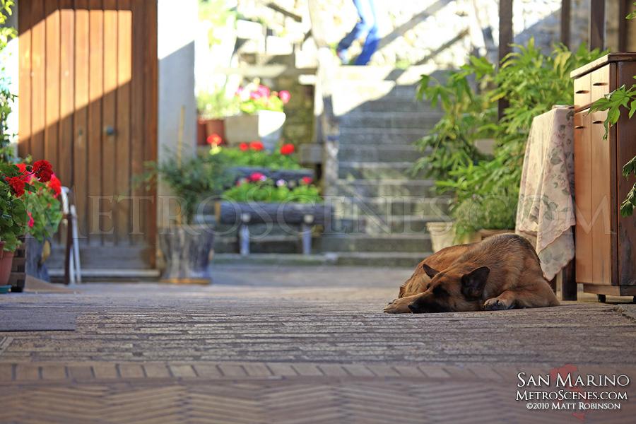 An inhabitant of San Marino