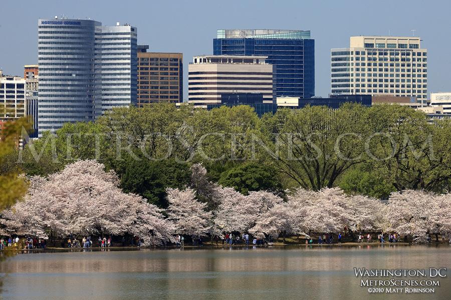 Arlington, Virginia skyline