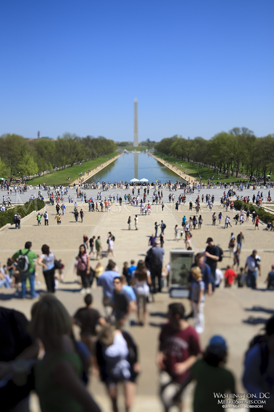 Tilt Shift across the Reflecting Pool in Washington, DC