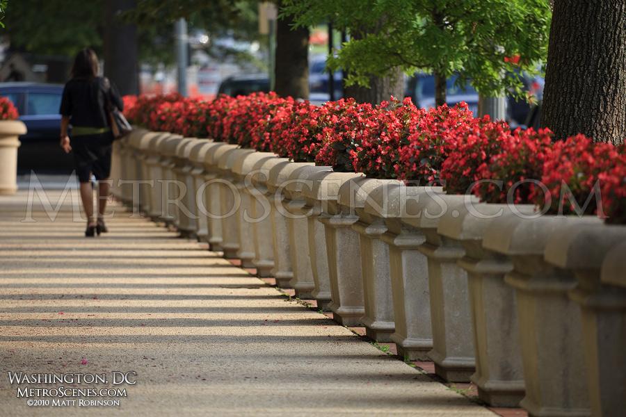 Sidewalk on 15th street, Washington, DC